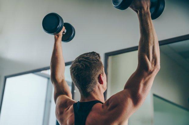 arm-back-muscles_4460x4460.jpg